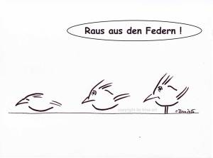 amsel-cartoon