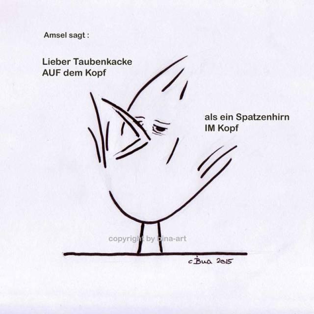 Amsel sagt . Lieber Taubenkacke auf dem Kopf, als ein Spatzenhirn im Kopf !